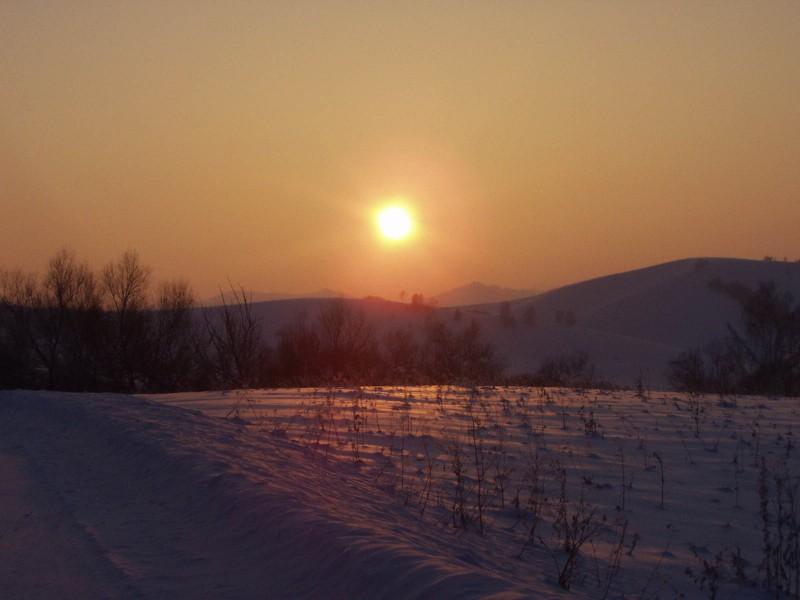 Заготовки из крыжовника на зиму рецепты